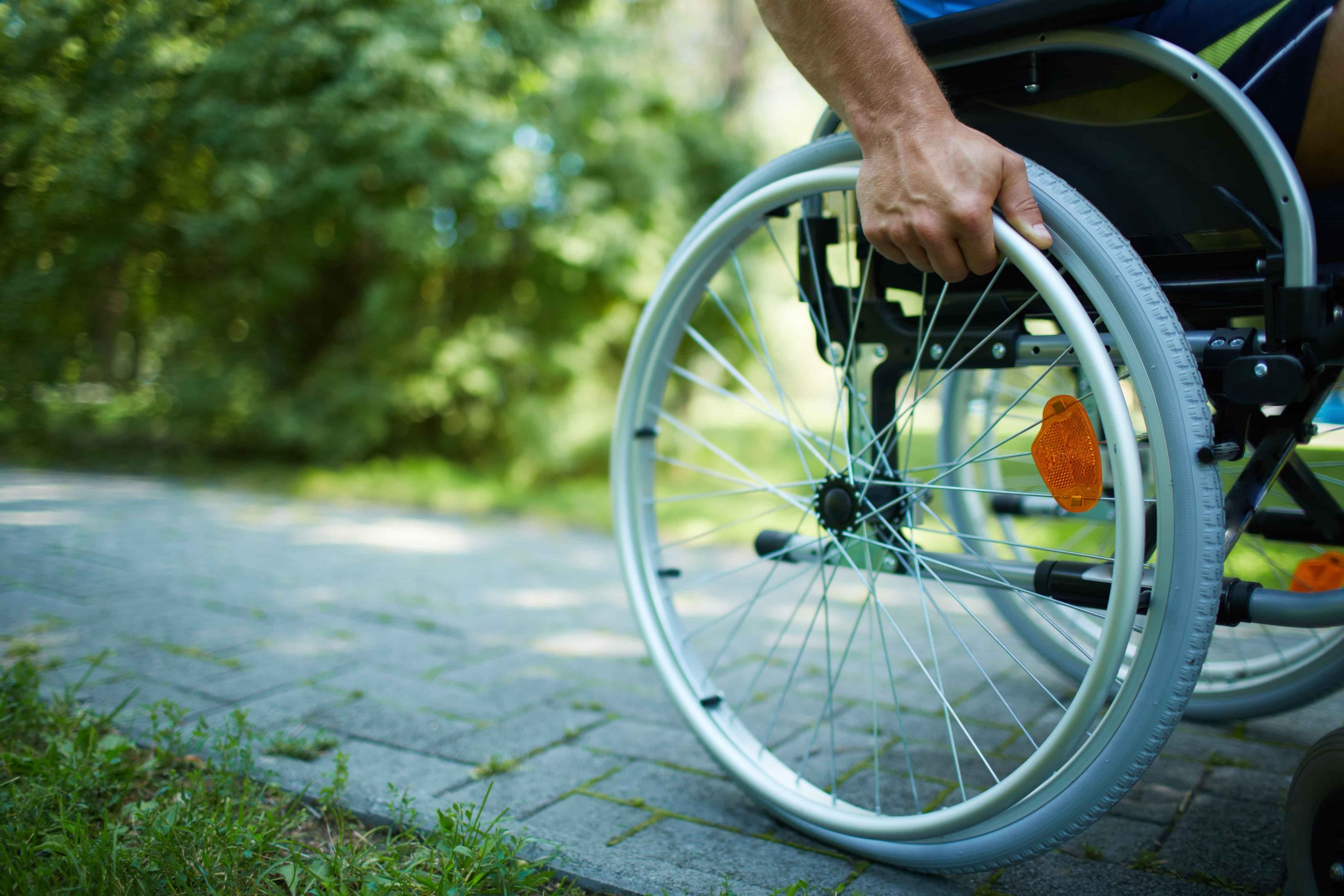 Rouzbeh Pirouz - disabled jobseekers